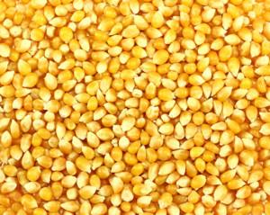 Gluten-free-corn